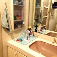 珪藻土活用法/珪藻土/珪藻土バスマット/洗面所 珪藻土バスマットを洗面台の上に乗せて、歯…