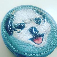 コインケース/財布/似顔絵/犬似顔絵/シーズー犬/おすすめアイテム/... 小さい時の写真だそうです。 コインケース…(2枚目)