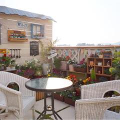 テラス/ガーデンテーブル&チェア/ガーデン雑貨/花と緑のある暮らし/ガーデニング/手作りガーデン/... おはようございます🌅 お天気の日に撮った…