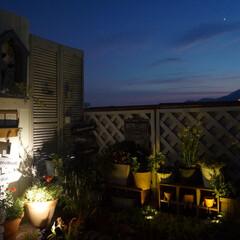 夜空/星空観察/夜のベランダ/ライトアップ/ガーデンテラス/ベランダガーデニング/... 夜のベランダ🌌🌙⭐ ソーラーライトが暗さ…