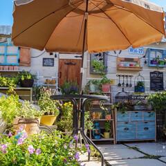 テラス/花が好き/ルーフバルコニー/ガーデニング/ベランダ/花のある暮らし/... 陽射しが強く照りつけるルーフバルコニーで…