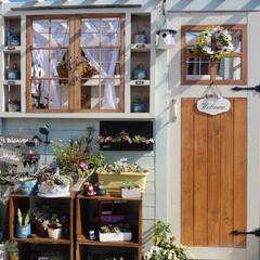 ルーフバルコニー/ガーデン雑貨/花のある暮らし/多肉植物/手作り小屋/ベランダガーデニング/... 昨日はガーデニング日和でした⸜🌷︎⸝
