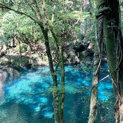 自然/写真スポット/熊本/菊池渓谷/お出かけ うだるような暑さの中  涼を求めて  …