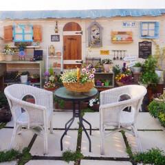 春の花/ガーデンリビング/暮らしを楽しむ/ベランダDIY/ベランダガーデニング/花が好き/... おはようございます🎵 昨日のガーデンテラ…