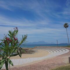 日暈/環水平アーク/太陽の周りに虹/綺麗な景色/夏休みの思い出作り/ビーチで泳ぐ/... 一昨日は、子どもと今年最初で最後の海に出…