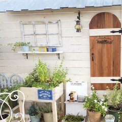 ガーデンテラス/花のある暮らし/家庭菜園/板壁DIY/手作りドア/マイガーデン/... ベランダガーデニングでナチュラルなガーデ…