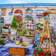 リビングガーデン/ルーフバルコニー/クリスマス/ガーデン雑貨/ガーデニング/花の寄せ植え/... この時期にしか出来ない ガーデンピクニッ…