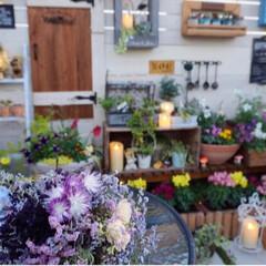 ドライフラワーのブーケ/癒しの空間/キャンドル/花と緑のある暮らし/ガーデンテラス/ガーデニング/... 11月に入り、日暮れも早く訪れるようにな…