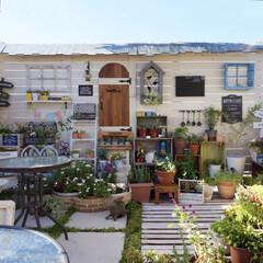 ナチュラルガーデン/ベランダDIY/ガーデンテラス/ベランダガーデニング/癒しの空間/ベランダ改造中/... おはようございます👒 連日、青空が綺麗で…
