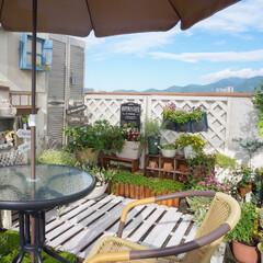 花のある暮らし/ガーデンテーブル/板壁/多肉植物/ガーデン雑貨/すのこウッドデッキ/... ベランダガーデニング中です(^^♪ ここ…