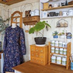 ミルクペイントforガーデン ペンキ DIY 塗装 塗る ペイント 家具 大工 色付け 200mL ターナー | ターナー(ペンキ、塗料)を使ったクチコミ「リビングのディスプレイコーナー✨  ター…」