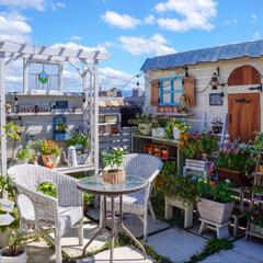 花のある暮らし/ルーフバルコニー/テラス/ガーデンリビング/ガーデニング おはようございます🎶 青空ガーデンpic…