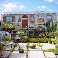 ウッドフェンス/花と緑のある暮らし/ベランダガーデニング/LIMIAインテリア部/DIY 夏らしい青空が広がり 昨日は暑い一日でし…