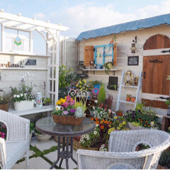 ガーデニング/ナチュラルガーデンを目指して/花が好き/花の寄せ植え/ベランダガーデニング/手作りガーデン/... 今日から三連休ですね~🎵 お天気にも恵ま…