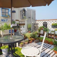 テラス/緑のある暮らし/花のある暮らし/ナチュラルガーデン/ガーデン雑貨/mygarden/... ベランダガーデニング中です😊 好きな花々…