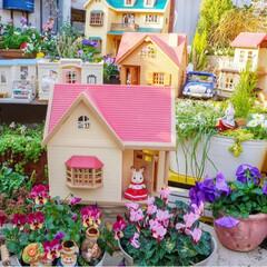 ガーデニング/メルヘンワールド/花の寄せ植え/花のある暮らし/ベランダガーデニング/シルバニア/... おはようございます🎶  冬休み中のあ…