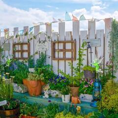 花と緑のある暮らし/ナチュラルガーデン/ガーデンフェンス/ベランダガーデニング/ガーデン雑貨/雑貨だいすき おはようございます☀ 風が爽やかに吹いて…