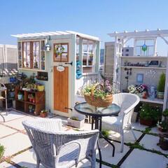 手作り小屋/花のある暮らし/青空リビング/ガーデンテラス/ベランダガーデニング/手作りガーデン/... おはようございます🎵 昨日の青空リビング…