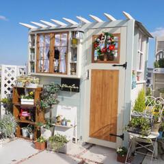 ガーデン雑貨/ダイソーのリース/花と緑のある暮らし/手作り小屋/手作りガーデン/ガーデニング/... おはようございます☀️ 晴れた日の休日に…