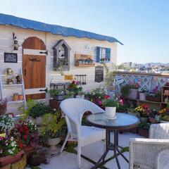 ガーデニング/花と緑のある暮らし/ガーデンテラス/手作りガーデン/ベランダガーデニング/DIY おはようございます☀️ 昨日は快晴でした…