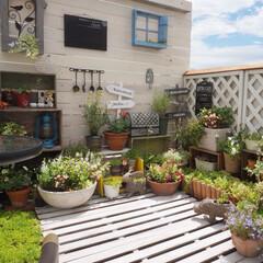 ガーデン雑貨/ナチュラルガーデン/ウッドデッキ/ベランダDIY/花のある暮らし/テラス/... 迷走台風🌀 心配してたけど、なんの気配も…