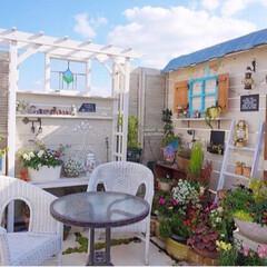 花のある暮らし/手作りパーゴラ/手作り小屋/ベランダガーデニング/ガーデニング/ナチュラルガーデン/... 昨日の手作りガーデン🌷 良い天気で暖かく…