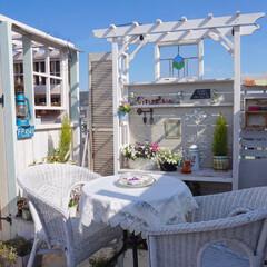 ベランダDIY/ルーフバルコニー/花のある暮らし/ガーデニング/ベランダガーデニング/ガーデンリビング/... 昨日は穏やかな天気で、暖かくお出掛け日和…