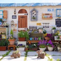 花が好き/ガーデニング/ルーフバルコニー/多肉植物/花のある暮らし/ベランダガーデニング/... おはようございます☀ 土日ガーデニング日…
