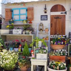 ベランダDIY/ルーフバルコニー/ガーデン雑貨/花の寄せ植え/花のある暮らし/ガーデニング/... おはようございます😊 いよいよ新しい時代…