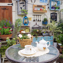 花のある暮らし/ガーデニング/休日の過ごし方/ティータイム/ガーデンライフ/DIY/... こんにちは...♪*゚ お休みの日は、一…