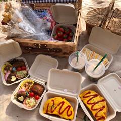 ピクニック/手作り弁当/オシャピク/おしゃれピクニック/お花見/春の一枚 満開の桜の下で おしゃピク💕