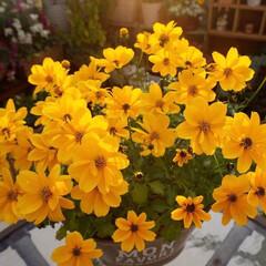 花が好き/ビタミンカラー/手作りガーデン/ベランダガーデニング/花のある暮らし/ガーデニング ビタミンカラーのビデンス🌼🌼🌼元気を貰え…