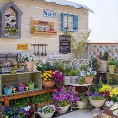 ルーフバルコニー/ウッドフェンス/ガーデン雑貨/花が好き/ガーデニング/多肉植物のある暮らし/... おはようございます⛅️ 昨日は、熊本でも…