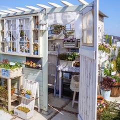 アンティーク雑貨/花のある暮らし/ベランダガーデニング/手作り小屋/小屋/ナチュラルガーデン/... 祝日の昨日は お天気も良くて 小屋の中を…