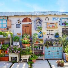 癒しの空間/ガーデニング/手作りガーデン/バルコニーガーデン/花と緑のある暮らし/DIY/... おはようございます☀ 朝から、こんなにい…