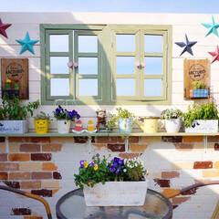 ウッドフェンス/花のある暮らし/ベランダガーデニング/セリア/ガーデン雑貨/DIY/... こんばんは🎵 昨日、完成したベランダの目…