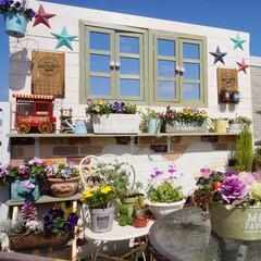 ベランダDIY/花のある暮らし/ウッドフェンスDIY/ベランダガーデニング/ガーデン雑貨/DIY/... なんていい天気なんでしょう☀️ ベランダ…