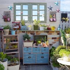 多肉植物/花と緑のある暮らし/ガーデニング/ウッドフェンス/ガーデニングdiy/ルーフバルコニー/... おはようございます☀ 爽やかな青空が戻り…