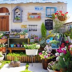 花が好き/ベランダDIY/ベランダガーデニング/DIY/花と緑のある暮らし おはようございます🎵 昨日は真夏日となり…