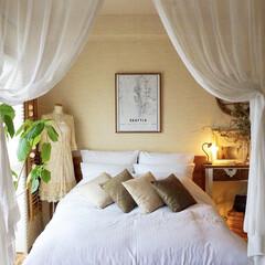インテリア/ベッドルーム/寝室/海外インテリア/北欧/北欧インテリア 少し前に、子どもと一緒に寝ている寝室を模…