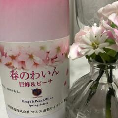 ワイン/春の一枚 春のワイン🌸 ロゼの甘口で飲みやすかった…