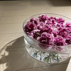 花のある生活/イケア/IKEA/花瓶/アレンジ/枯れる前に/... ちょっと元気がなくなってきたので、フロー…(1枚目)