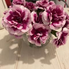 花のある生活/イケア/IKEA/花瓶/アレンジ/枯れる前に/... ちょっと元気がなくなってきたので、フロー…(2枚目)