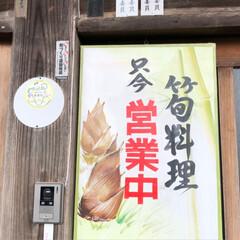 筍づくし/筍のさしみ/筍ご飯/令和の一枚/GW/至福のひととき/... GW最終日に筍づくし とっても美味しかっ…(7枚目)