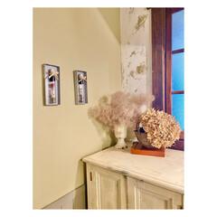 壁面飾り/空き箱/空き瓶/ドライフラワー/エコ/インテリア/... 頂き物のスパイスの瓶と、 財布を購入した…(3枚目)