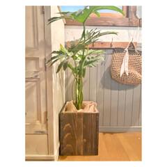 インダストリアル/鉢カバー/植物のある暮らし/観葉植物/ターナー色彩/DIY/... またまた鉢カバー作りました。 今回は端材…