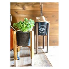 簡単DIY/ボタニカル/植物/観葉植物のある暮らし/フラワースタンド/鍋敷/... セリアのクロス鍋敷と 角材を使って プラ…