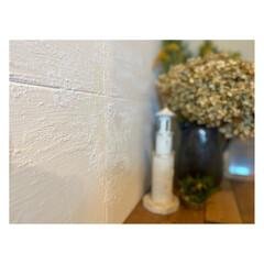 ミモザ/リノベーション/トイレの壁/ダイソー/100均/DIY/... モルタルを混ぜたペンキを ペイントしてブ…