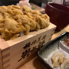 積丹ブルー/北海道/ウニ丼 北海道が誇るウニ丼の美味しいお店  田村…