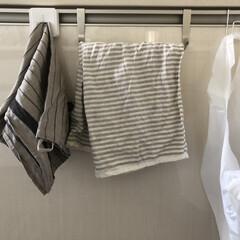 キッチン布巾問題/無印良品/キッチン キッチンの布巾問題。 手用と食器用、簡単…